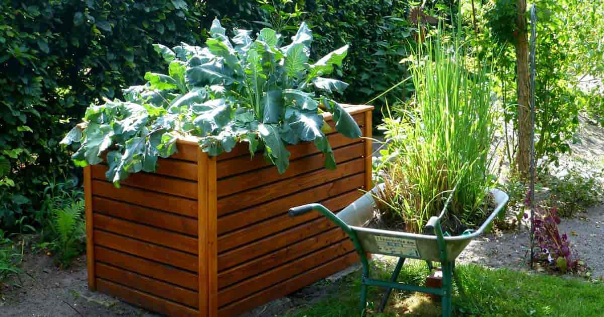 A Raised Garden Bed Is An Elevated Garden Bed That Sits Higher Than The  Surrounding Soil Or Ground, Hence The Name. Itu0027s Usually Supported By Some  Frames Or ...